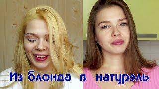 Как отрастить свой цвет / растяжка цвета дома / как выйти из блонда