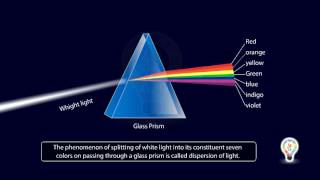 Refraction of light through prism | Dispersion Of White Light Video