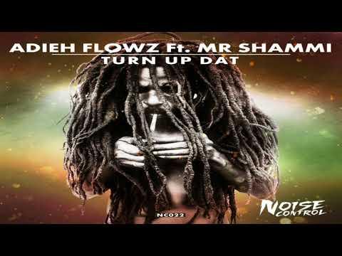 Adieh Flowz - Turn Up Dat (ft. Mr Shammi)
