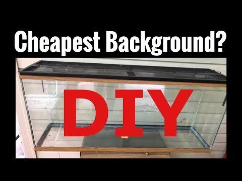 Cheapest Aquarium Background? DIY Paper, Foil?
