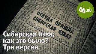 66.RU: Сибирская язва: как это было? Три версии