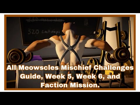All Meowscles Mischief Challenges Guide, Week 5, Week 6, And Faction Mission.