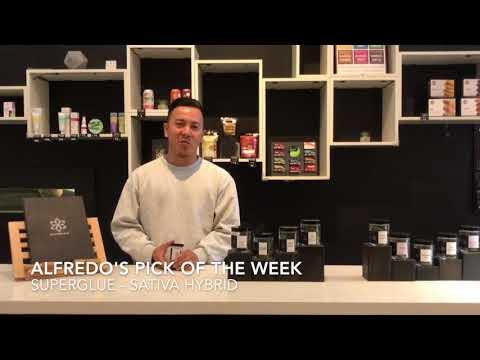 Staff Pick of the Week | Superglue | Sativa Hybrid | Shambhala MCC