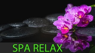 8 HOURS Best Relaxing Music: Spa Music, Massage, Zen, Healing Music, Yoga Music, Resting ☯349