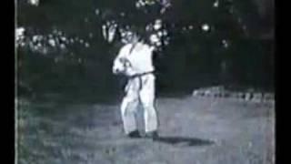 karate Karate Shotokan - Sochin Bunkai - Hiroshi  Shirai.FLV by ganganku
