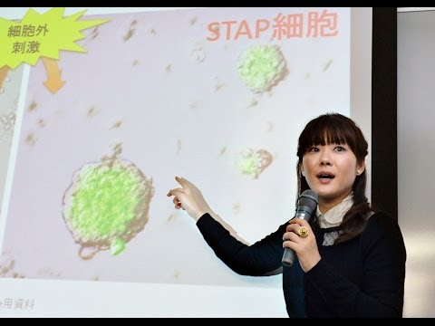 Pretty Woman: Japanese Media Blinded by the Gender of Stem Cell Scientist (LinkAsia: 2/7/14)