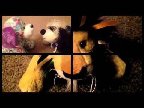 Webkinz music video Pass me by
