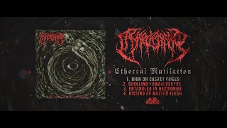 CASKET LEAKAGE - ETHEREAL MUTILATION [OFFICIAL EP STREAM] (2021) SW EXCLUSIVE