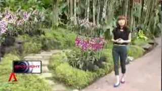 6 Oct 2013 Spotlight: Botanical Garden's bid as a UNESCO World Heritage Site