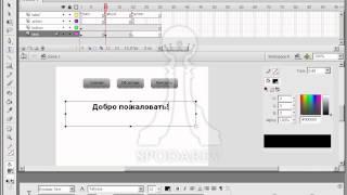 Создание простого сайта в Adobe Flash. Видео урок