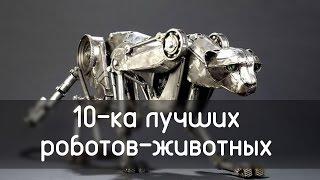 10 самых наикрутейших роботов животных.