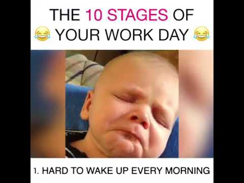 The 10 stages of your work day!!!