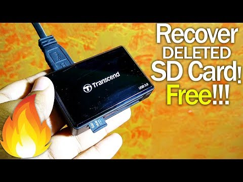 How To Recover Deleted Photos From SD Card FREE!! 🔥🔥🔥