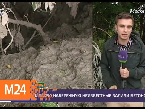 Неизвестные залили бетоном Карамышевскую набережную - Москва 24