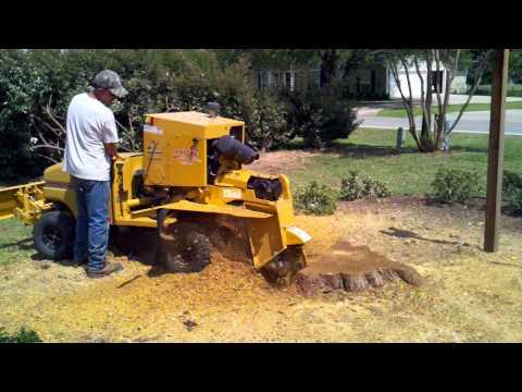 Rayco RG1645 Self-Propelled Stump Cutter