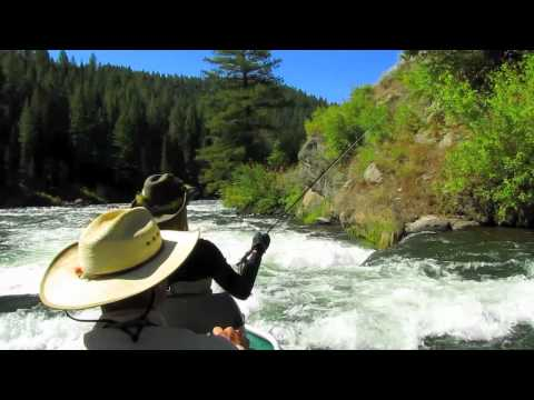 Join R&R Fly Fishing in Yellowstone Country