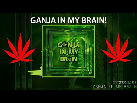 Ssquare- GANJA IN MY BRAIN! [TRAP REMIX]