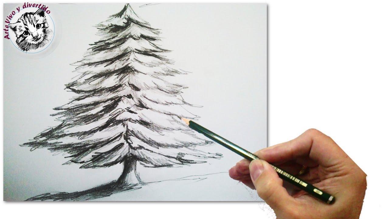 cmo dibujar un abeto o arbol de navidad realista paso a paso a lpiz tecnicas de dibujo
