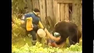 Шокирующее видео нападения медведей на людей/Shocking video of bears attacking people