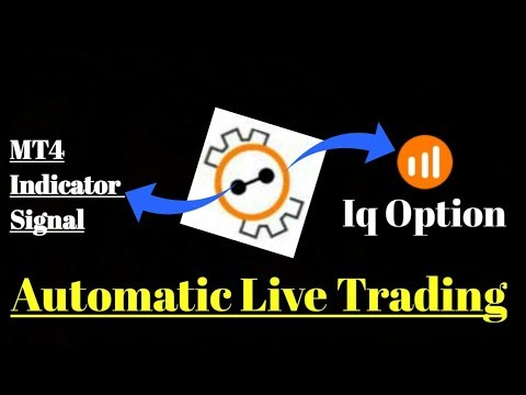 Robot IQoption Working With MT2IQ Real Account