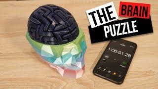 EPIC 3D Printed Brain Puzzle!