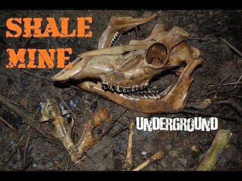 Abandoned Shale Mine - Full Of Bones - Scotland, UK - Underground Urbex Urban Exploration
