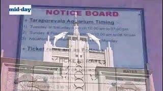 Here is Mumbai famous Taraporewala Aquarium new and improved!