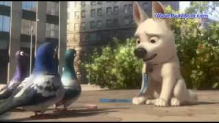 Bolt Arabic Dubbed Dvdrip Xvid Pukka 2008 Dvd2Arab com clip0