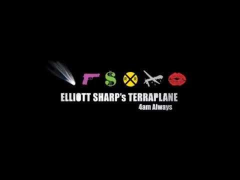 Elliott Sharp's Terraplane -  Ain t Got No
