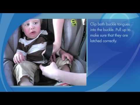 car-seat-installation:-evenflo-momentum-65™-convertible-car-seat