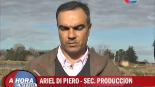 VICTOR AIOLA   ARIEL DI PIERO   RECORRDIO POR LA GUARDERIA CANINA