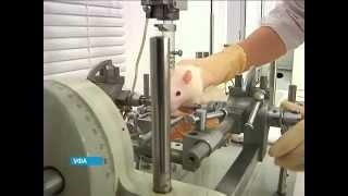Башкирские ученые вживили электрод в мозг лабораторной крысы
