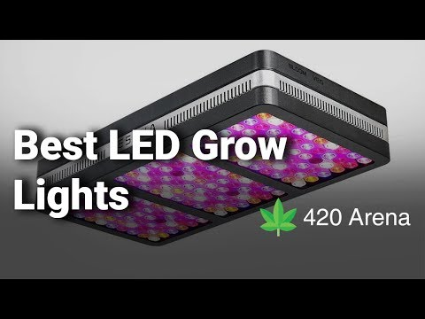 15+ Best LED Grow Lights Reviews for Weed, Cannabis, Money