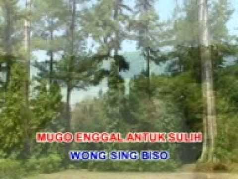 Pamitan - Gesang - Langgam Jawa - SD 3 Megawon