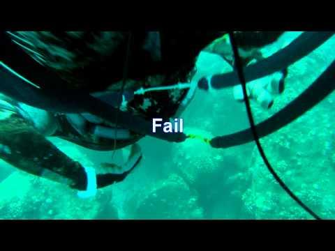 Quick Ahukini Dive