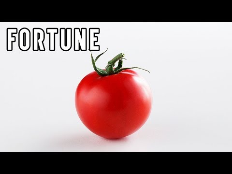 Scientists Working to Create Spicy Tomatoes I Fortune