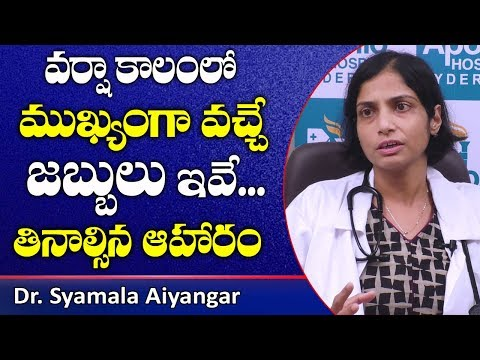 how-to-prevent-rainy-season-disease-|-seasonal-diseases-|-fever-|-cold-|-cough-|-health-tips-telugu