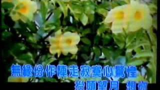 望月想你-台-蔡小虎-fuku92186翻唱