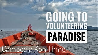 Almost eaten by wild animals. Volunteering in Koh Thmei