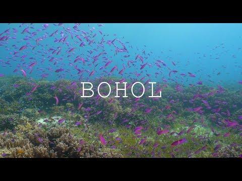 [ 4K | A7SII ] Bohol, Panglao | Underwater