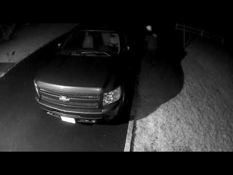 A suspect attempted to enter a locked vehicle that was parked in a New Canaan driveway.