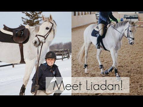 Riding Lesson & Meet Liadan! | HayItsMaya