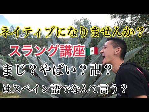 すぐに使える!《メキシコ》スペイン語スラング講座 【JAPOMEX TV】メキシコ留学
