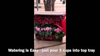 Wine Crate Vertical Garden