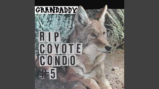 Play RIP Coyote Condo #5