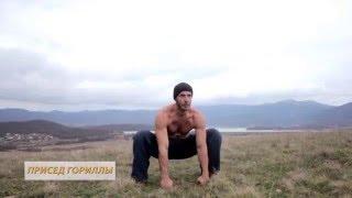 """""""Зверская""""  тренировка  Animal training"""