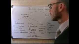 видео Зачем учить иностранный язык?