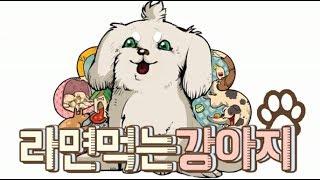 figcaption 팻두 - 라면 먹는 강아지 (Feat. 전태익) 멍멍~~~