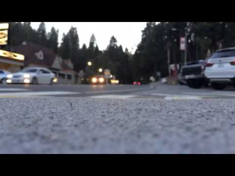 Peaceful Blue Jay, CA