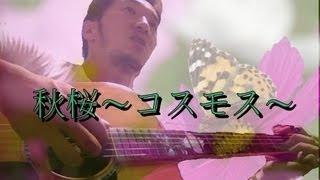 秋桜を、苦手なアルペジオでアコギ弾き語りしてみました。ギター弾き語...
